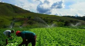 Financiamento do Fida visou fundamentalmente comunidades rurais FOTO: ROSÁRIO DOS SANTOS