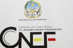 LOGOTIPO DO CONSELHO NACIONAL DE ESTABILIDADE FINANCEIRA FOTO: CLEMENTE